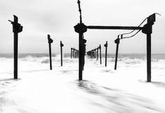 Молчаливая сила стоковая фотография