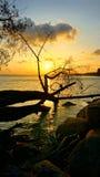 Момент захода солнца Стоковые Фотографии RF