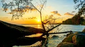 Момент захода солнца Стоковые Фото