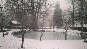 Момент зимы Стоковое Изображение