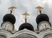 Монастырь святой троицы в Murom Стоковое Изображение