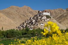 Монастырь Chemrey против темносинего неба в Ladakh стоковое изображение