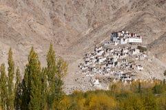 Монастырь Chemrey, Ladakh, Индия Стоковая Фотография RF
