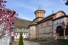 Монастырь Cozia, Valcea Румыния стоковые фотографии rf