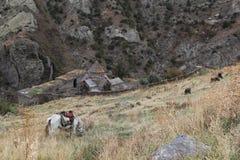 Монастырь Gndevank Стоковое Изображение RF