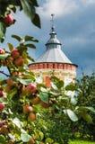 Монастырь Prilutsky спасителя башни Стоковая Фотография RF
