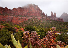 монахини madonna каньона Аризоны идут дождь красное sedona утеса Стоковое Фото