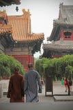 Монахи в виске ламы стоковые фотографии rf