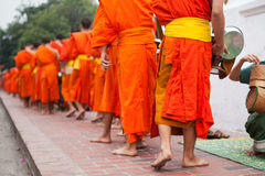 монахи Стоковое фото RF