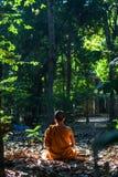 Монах леса Стоковая Фотография RF