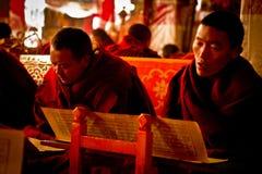 Монах монастыря Лхасы Тибета Drepung Стоковая Фотография RF