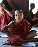 Монах послушника, Мьянма Стоковая Фотография RF
