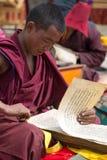 Монах читая и изучая традиционную книгу Стоковая Фотография RF