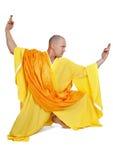 монах стоковые изображения rf
