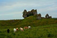 Монашеские руины на Clonmacnoise Ирландии Стоковые Изображения