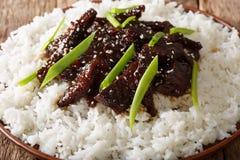 Монгольская говядина с соусом и гарнирует макроса риса горизонтально Стоковое Фото