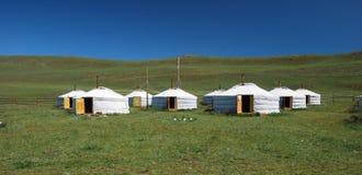 монгольские yurts Стоковые Изображения RF