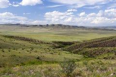 Монгольский ландшафт с лошадями Стоковые Фото