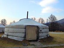 Монгольское yurt стоковые фотографии rf