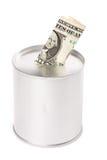 монетка банка Стоковое фото RF