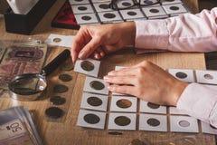 Монетка злотого в руке ` s женщины Стоковая Фотография