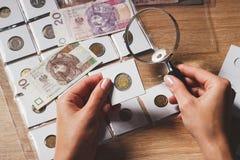 Монетка злотого в руке ` s женщины Стоковое Изображение