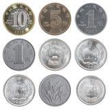 Монетка китайца установленная Стоковая Фотография RF