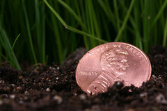 монетка потеряла Стоковые Фото
