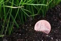монетка потеряла Стоковое Фото