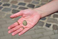 Монетка сувенира в ее руке Стоковые Фото