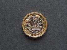 монетка 1 фунта, Великобритания Стоковое фото RF