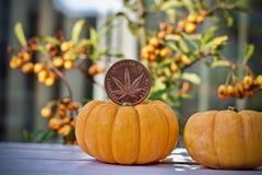 Монетка хеллоуина марихуаны стоковое фото rf