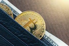 Монетка bitcoin Cryptocurrency золотая в кожаном бумажнике с американской банкнотой доллара схематическое изображение для секретн Стоковое Изображение RF