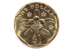 монетка singapore стоковое изображение rf