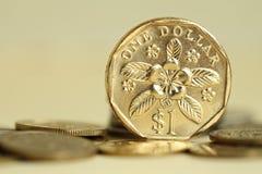 монетка singapore стоковое фото
