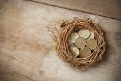 Монетки английского фунта с гнездом птицы Стоковая Фотография