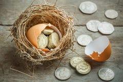 Монетки английского фунта с гнездом птицы Стоковые Фото