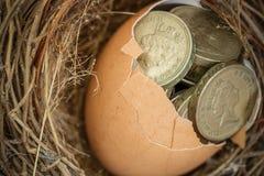 Монетки английского фунта с гнездом птицы Стоковые Изображения