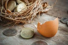 Монетки английского фунта с гнездом птицы Стоковое Изображение