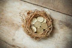 Монетки английского фунта с гнездом птицы Стоковые Фотографии RF