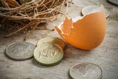 Монетки английского фунта с гнездом птицы Стоковое фото RF