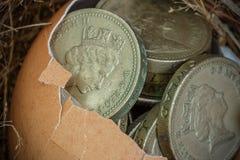 Монетки английского фунта с гнездом птицы Стоковая Фотография RF