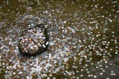 Монетки бросают в пруд - Киото Стоковые Изображения