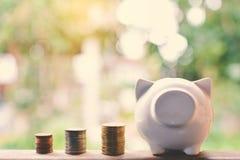 Монетки и piggy банк Стоковые Изображения RF