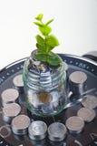 Монетки при завод и часы, изолированные на белой предпосылке Концепция сбережений Стоковые Изображения