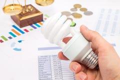 Монетки электрической лампочки, диаграммы и евро Стоковая Фотография RF