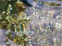 монетки Стоковая Фотография RF