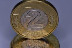 Монетки PLN Стоковое Изображение