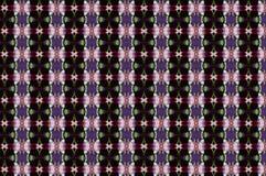 Моника 117 Стоковые Фотографии RF