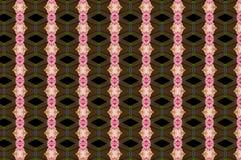Моника 118 Стоковые Изображения RF